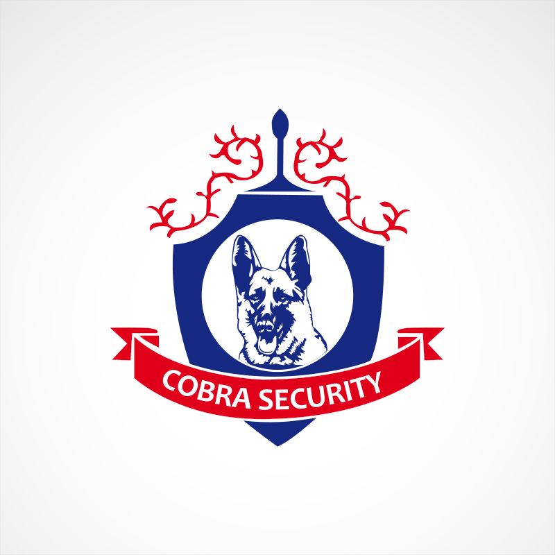 Cobra-Security-Ltd
